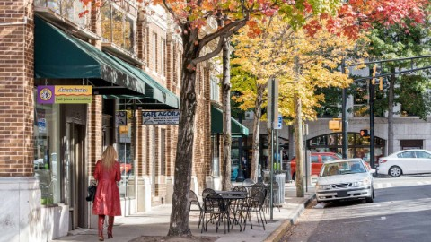 Charming avenue running through Midtown Atlanta